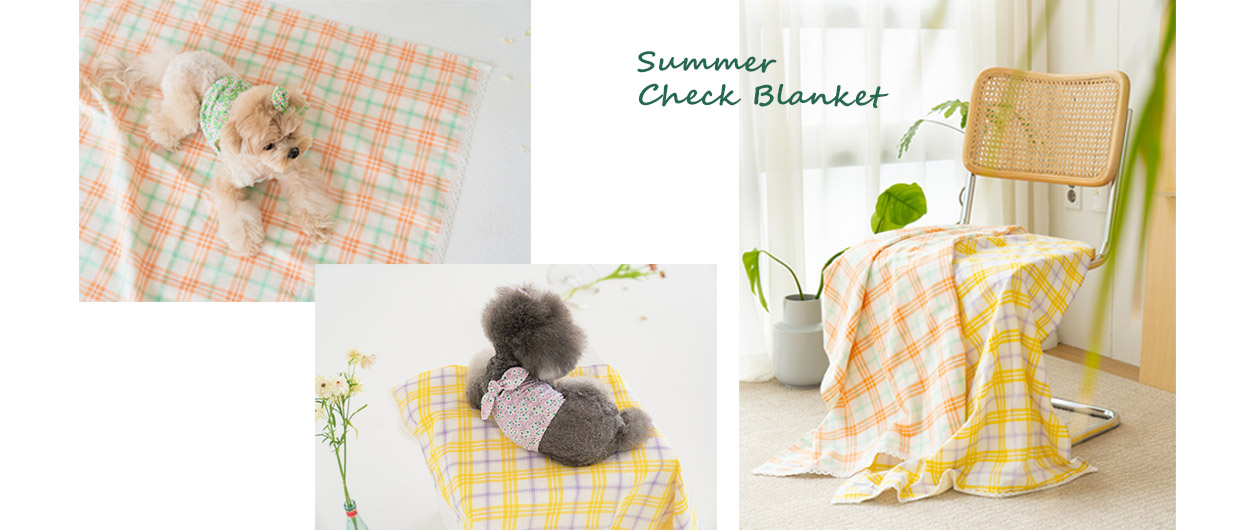Summer Check Blanket