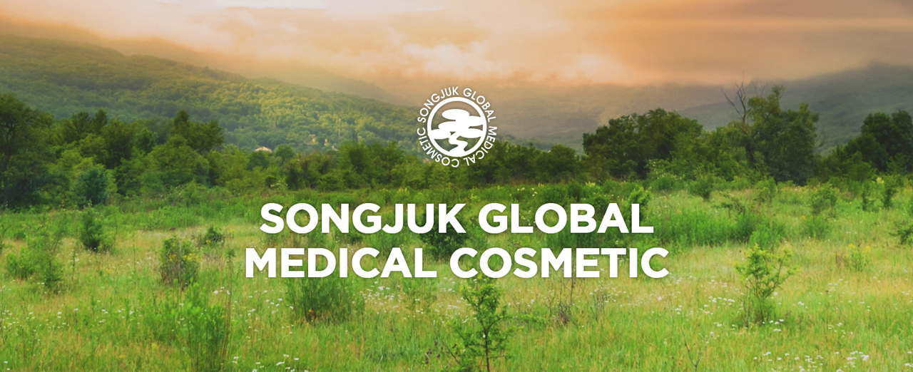 SONGJUK GLOBAL MEDICAL COSMETIC